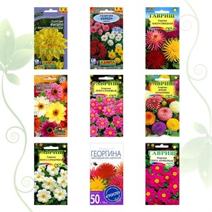 Коллекция семян Георгины
