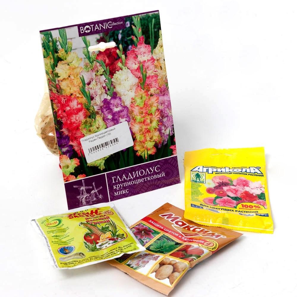 Луковичные цветы