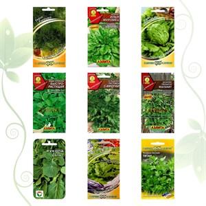 Коллекция семян зеленая приправа